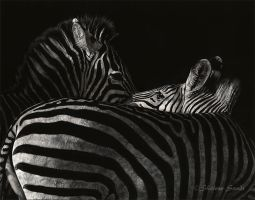 The Feeling's Mutual - Scratchboard by ShaleseSands