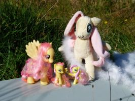 Fluttershy collection by otherunicorn