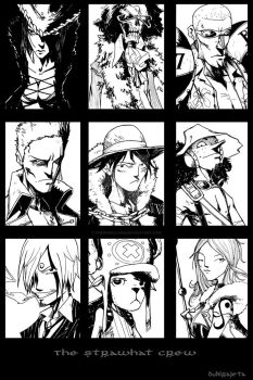 The Strawhat Crew by TheIronClown