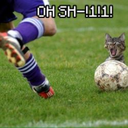 Why Cats Don't Play FootBall by xXangelpeaceXxDA