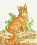 Firestar's Highledge by Fields-of-Zephyr