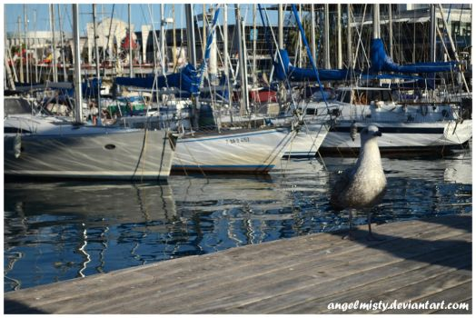 Port Vell by angelmisty