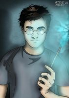 Harry Potter by Steve-Nice