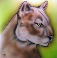 Mountain Lion airbrush by dx