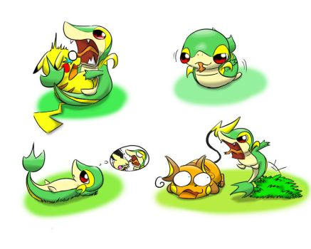 Snivy wants chus by ham77770011
