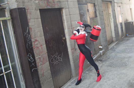 My Hammer and Me : Harley Quinn : DC Comics by Lossien