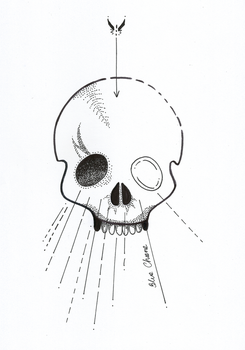 Dotwork skull by Blue-Chara