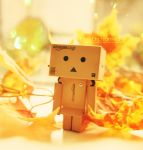 Fall Danbo by EliseEnchanted