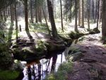 The Harz by knueppel