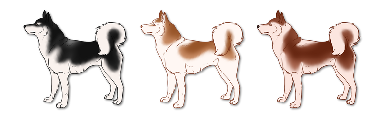Alaskan Batch - Sold by Miss-Adopts