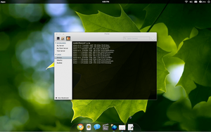Terminal for gnome -elementary by nookienoq