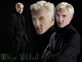 Draco Malfoy Blend by VictoriaLovell93