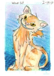 ATC - Cat by lissa-quon