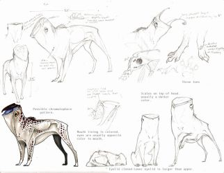 Ket Reference Sketches by FrancesLane