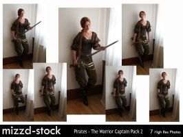 Pirates-Warrior Captain Pack 2 by mizzd-stock