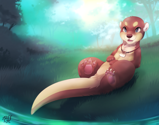 IM AN OTTeR 2 by phation
