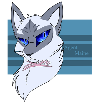 The Maine Man by Spiritpie