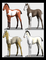 OPEN Lineage Foal Point Adopts by lionsilverwolf