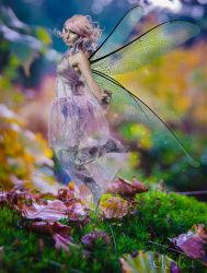 Autumn fairy by DieElster
