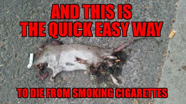 die from smoking cigarettes by calvincanibus
