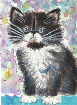 Black and white kitten watercolor painting aceo by tulipteardrops