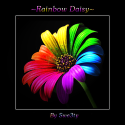 Rainbow Daisy by swe3ty
