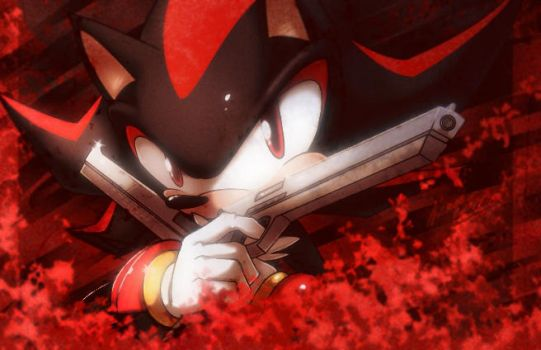 shadow the hedgehog by nancher