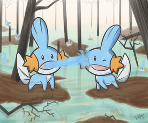 Mudkip Buddies by Kippette