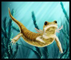 Chunerpeton tianyiensis by dustdevil