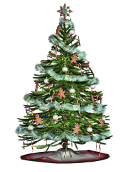 Christmas Tree 2 PNG Stock by Roy3D