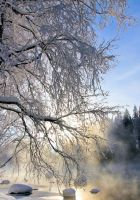 Winter in Finland .. by KariLiimatainen