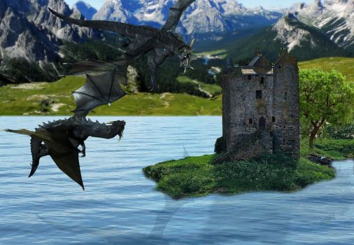 Combat Dragons by Fairling