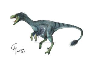 Troodon formosus by CamusAltamirano
