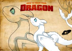 How To Train Your Dragon3// Light fury? by DTomArt