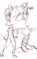 anthro sketches by MangoBirdy