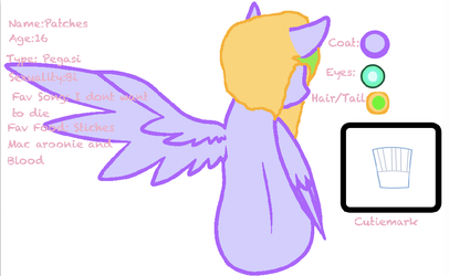 Patches Ref sheet (Re-upload) by SketchBookPony