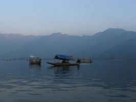 Dal lake, Kashmir, India by phoenix1584