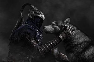 Artorias and Ornstein cosplay 9 by zep-hindle
