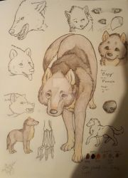 (Wolf) Copy Sketchdump and Reference Sheet by LunaWolf4