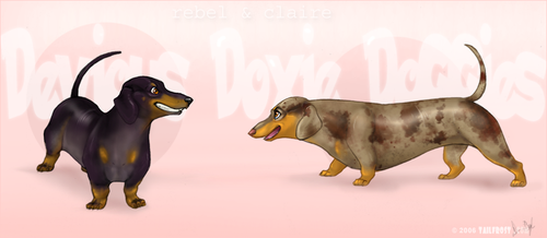 Devious Doxies -com by tailfrost