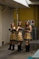 EXTERMINATE by barbiebabe