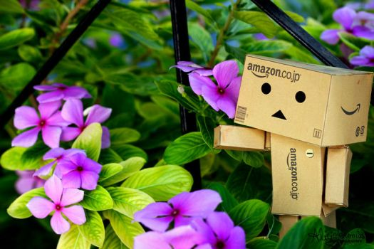 There Danbo by AngelAr-Feiniel