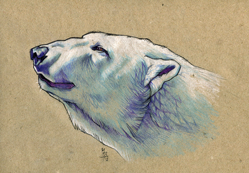 Polar bear - 100animals100days by wolf-minori
