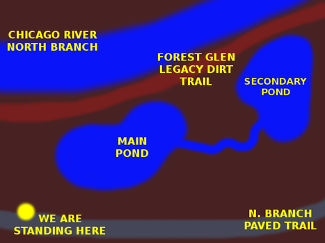 Half Assed Pond Map by paradigm-shifting
