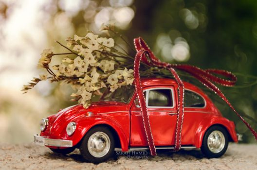 Little Red Riding Beetle by SaRaH-22