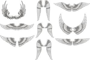 Free Vector Wings Pack by artamp