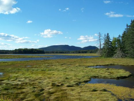 Marshes and mountains by Dylactus