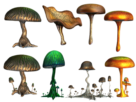 Mushrooms PNG Stock by Roy3D