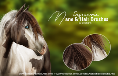 Dynamic MANE and HAIR Brushes for Photoshop by Loonaris