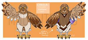 canela ref by MoonlitCanid
